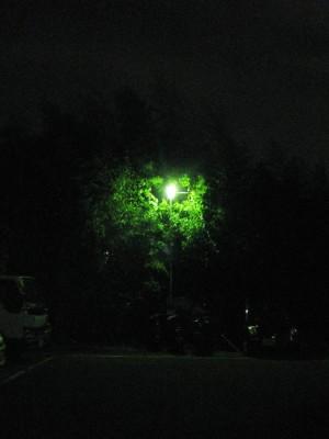 090719-1.JPG