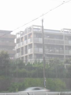 大雨 (1).JPG