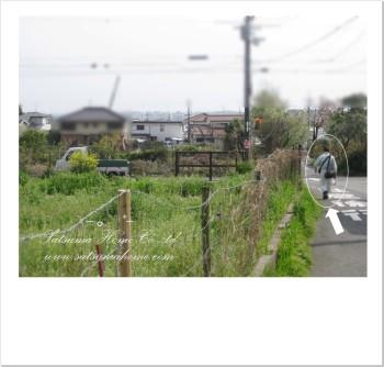 20110417-4.jpg
